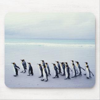King penguins (Aptenodytes patagonicus) Mouse Pad