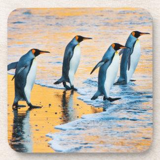 King Penguins at Sunrise - beverage coaster