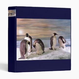 King penguins Binders