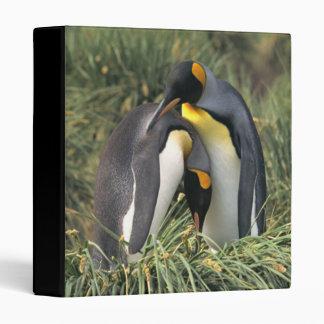 King penguins Lovers Binders
