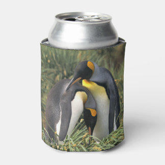 King penguins Lovers Can Cooler