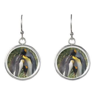King penguins Lovers Earrings