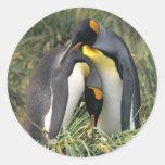King penguins Lovers Sticker