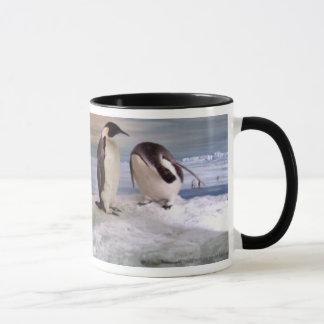 King penguins mug