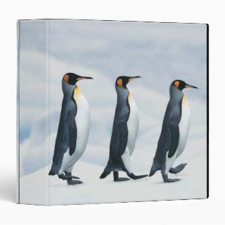 King Penguins walking in single file Binder