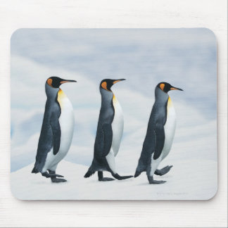 King Penguins walking in single file Mouse Pad