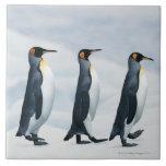 """King Penguins walking in single file Tile<br><div class=""""desc"""">King Penguins walking in single file   Joel Simon   AssetID: dv528033</div>"""