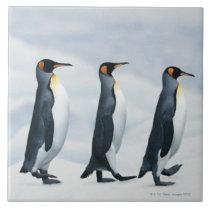 King Penguins walking in single file Tile