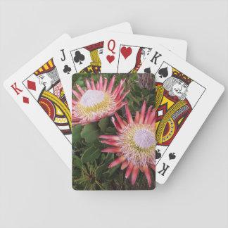 King Protea (Protea Cynaroides), Helderberg Playing Cards