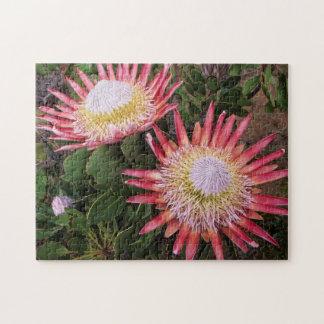 King Protea (Protea Cynaroides), Helderberg Jigsaw Puzzle