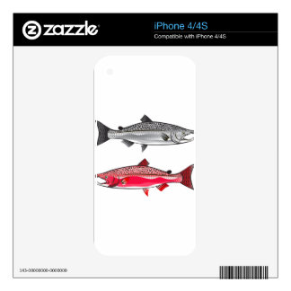 King Salmon. Silver and Spawning. Decals For The iPhone 4