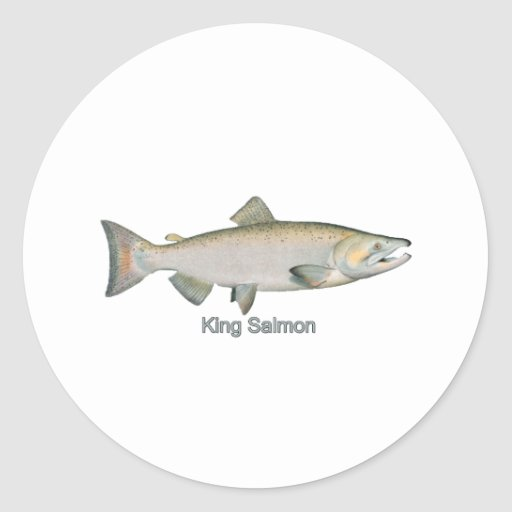 King Salmon (titled) Round Stickers