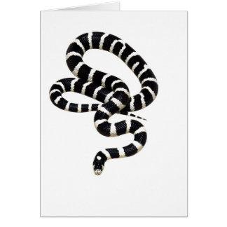 King Snake from Junglewalk.com Card