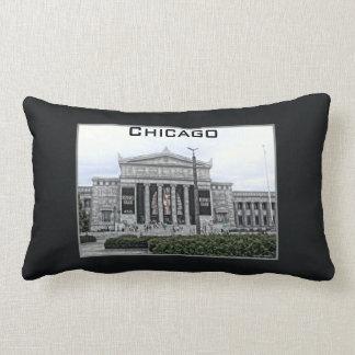 King Tut Chicago Throw Pillows