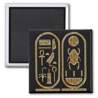 King Tut Hieroglyphics Fridge Magnets