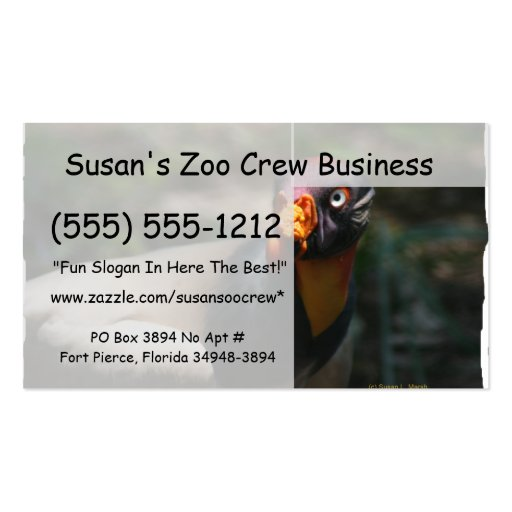 King Vulture bird closeup Sarcoramphus papa Double-Sided Standard Business Cards (Pack Of 100)