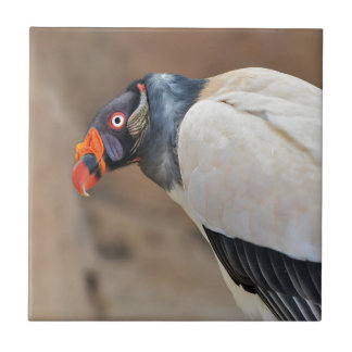 King Vulture Small Square Tile