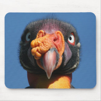 King Vulture Ugly Bird Mousepad