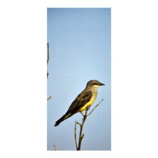 Kingbird occidental lona publicitaria