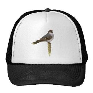 Kingbird Trucker Hat