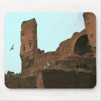 Kingdom of the Seagulls Mouse Pad