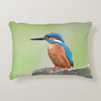 Kingfisher bird accent pillow