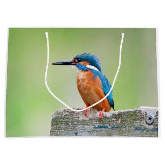 Kingfisher bird large gift bag