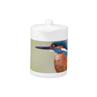Kingfisher bird. teapot
