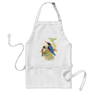 Kingfisher Birds Wildlife Animals Pond Adult Apron