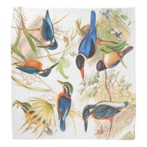 Kingfisher Birds Wildlife Animals Pond Bandana