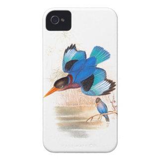 Kingfisher Birds Wildlife Animals Pond iPhone 4 Case