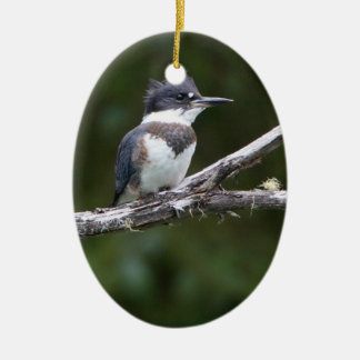 kingfisher ceramic ornament