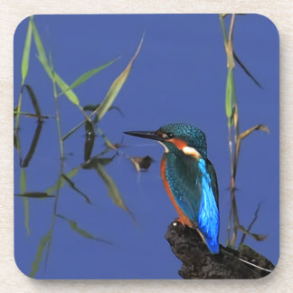 Kingfisher Cork Coaster