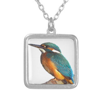 """Kingfisher"" design products Silver Plated Necklace"