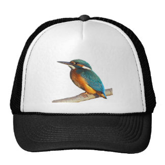 """""""Kingfisher"""" design products Trucker Hat"""