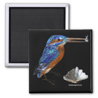 KINGFISHER  , Electric Blue, Black Magnet