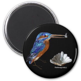 KINGFISHER Electric Blue Black Magnets