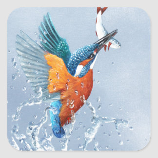 Kingfisher flying out of the water square sticker