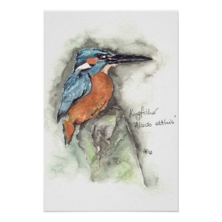 Kingfisher in watercolour poster
