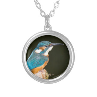 Kingfisher on a stick silver plated necklace