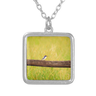 KINGFISHER RURAL QUEENSLAND AUSTRALIA SILVER PLATED NECKLACE