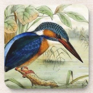 Kingfisher Vintage Bird Illustration Drink Coaster