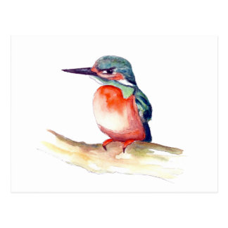 Kingfisher watercolor painting on items postcard