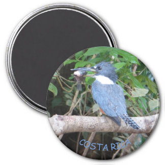 Kingfisher with Fish from Costa Rica Magnet