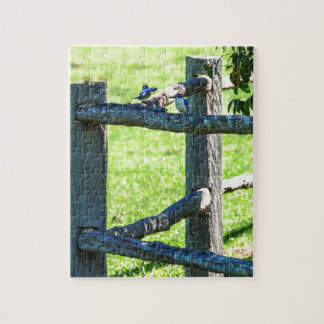 KINGFISHER'S AUSTRALIA WITH ART EFFECTS JIGSAW PUZZLE
