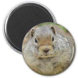 Kingpin 2 Inch Round Magnet