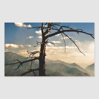KINGS CANYON VISTA WITH AN OLD DRY TREE RECTANGULAR STICKER