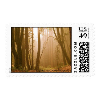 King's Mountain, Northern California Postage Stamp