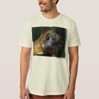 Kinkajou shirt
