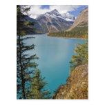 Kinney Lake Post Card